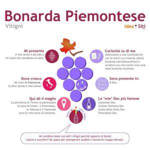 Vitigno del Piemonte bonarda piemontese