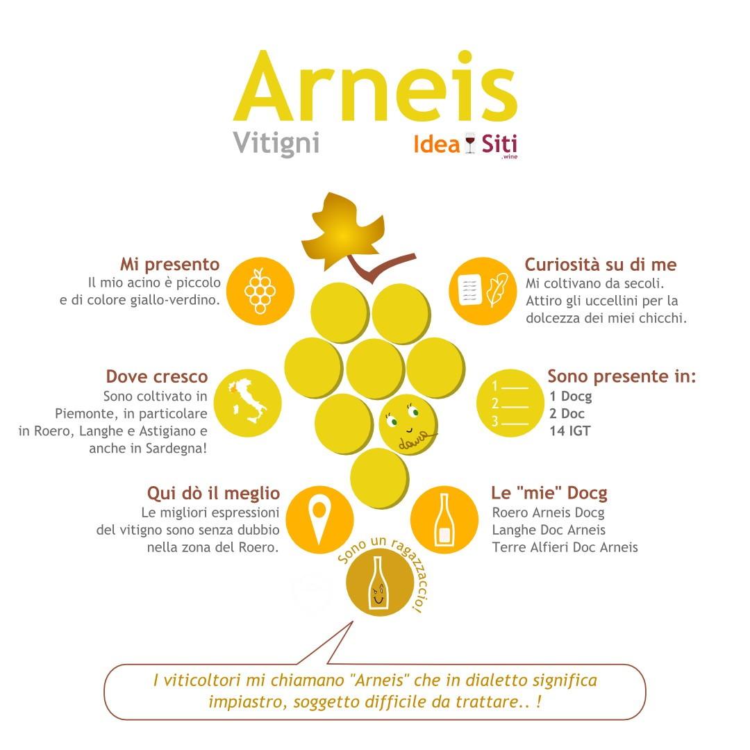 arneis infografica vitigno