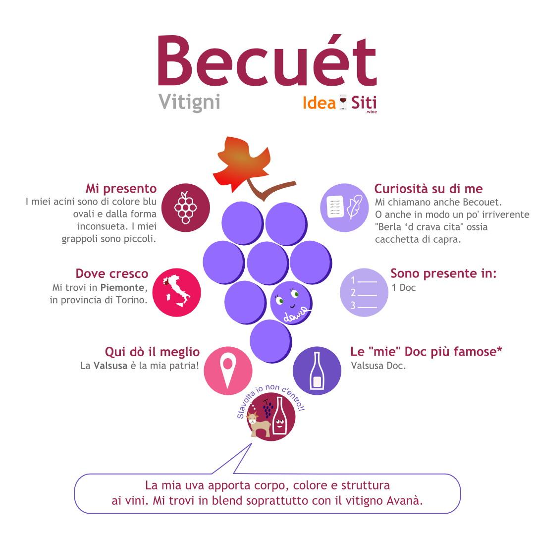 vitigno valsusa becuet