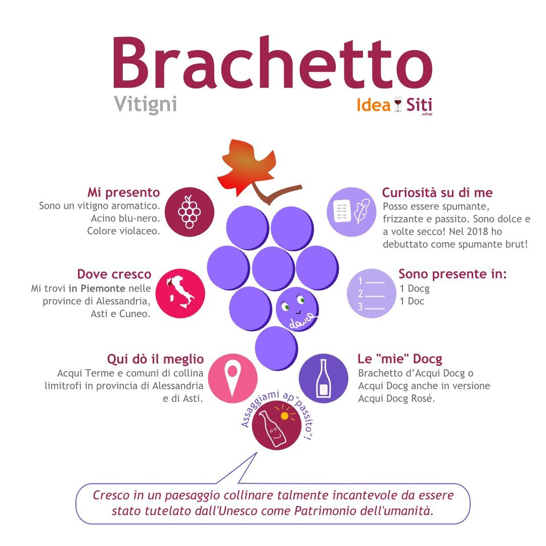 infografica vino brachetto
