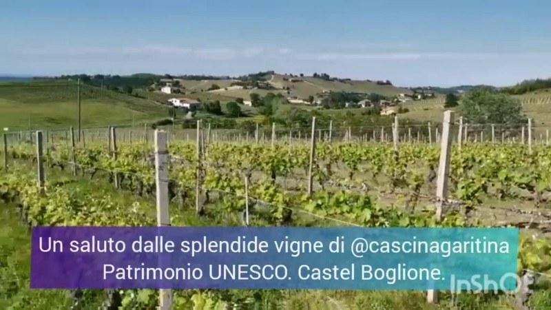 Piemonte: colline Unesco