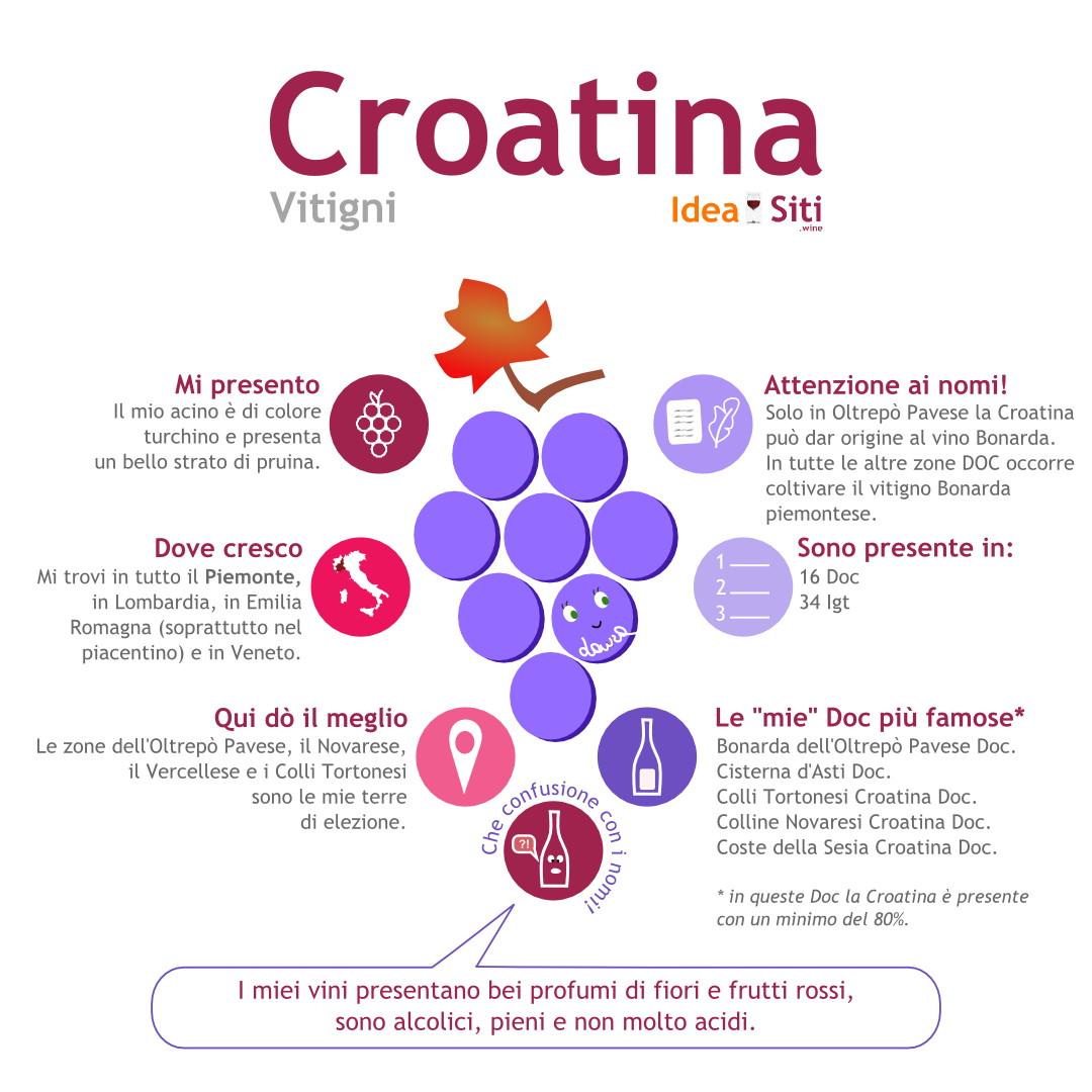 croatina vitigno infografica