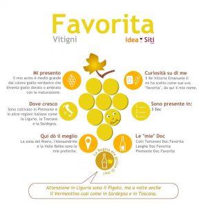 Favorita vitigno infografica