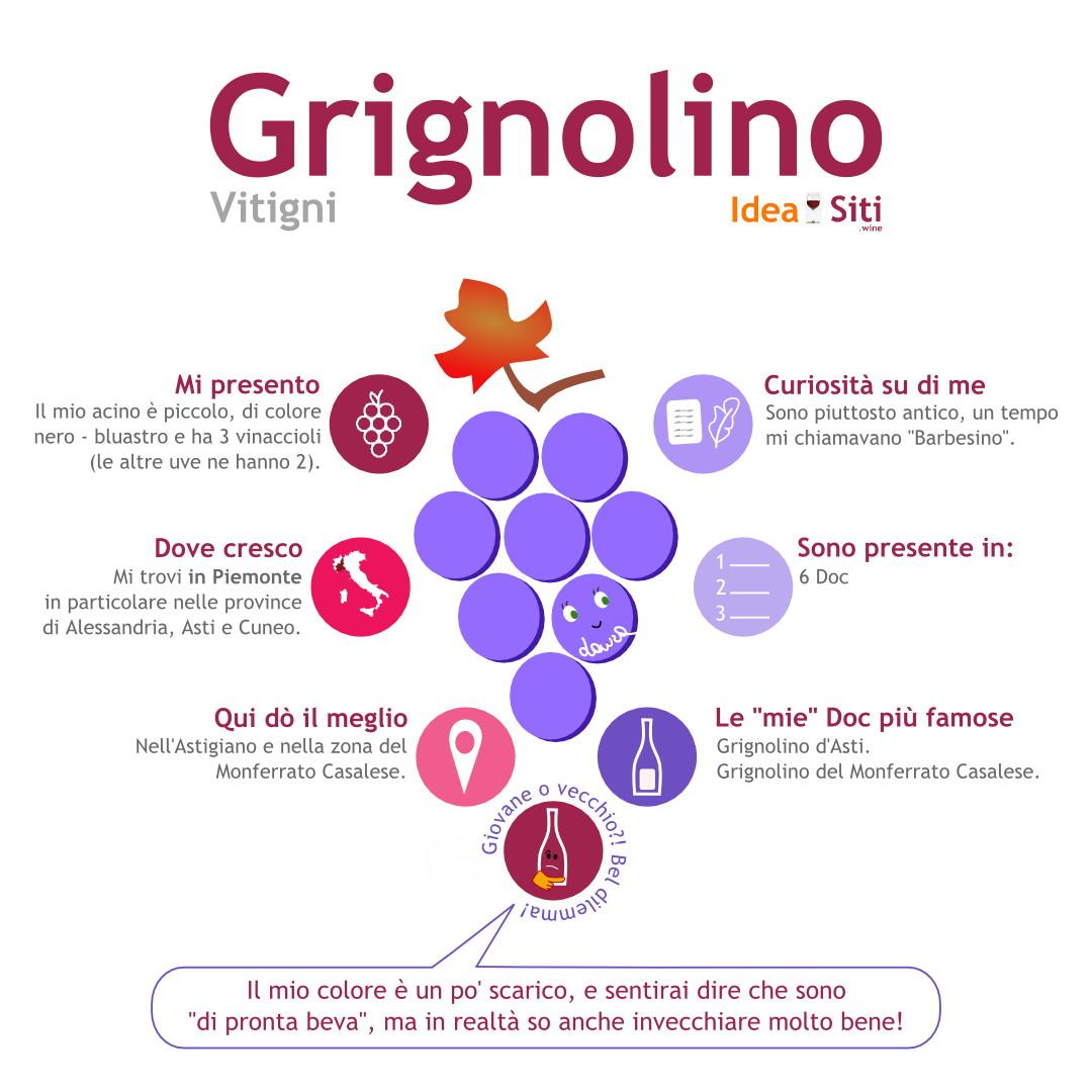 Vitigno del Piemonte Grignolino infografica