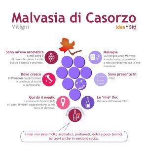 Malvasia di Casorzo infografica