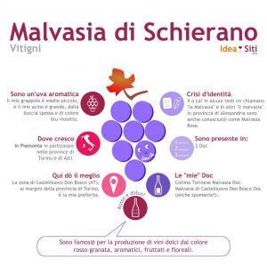 Malvasia di Schierano infografica vitigno