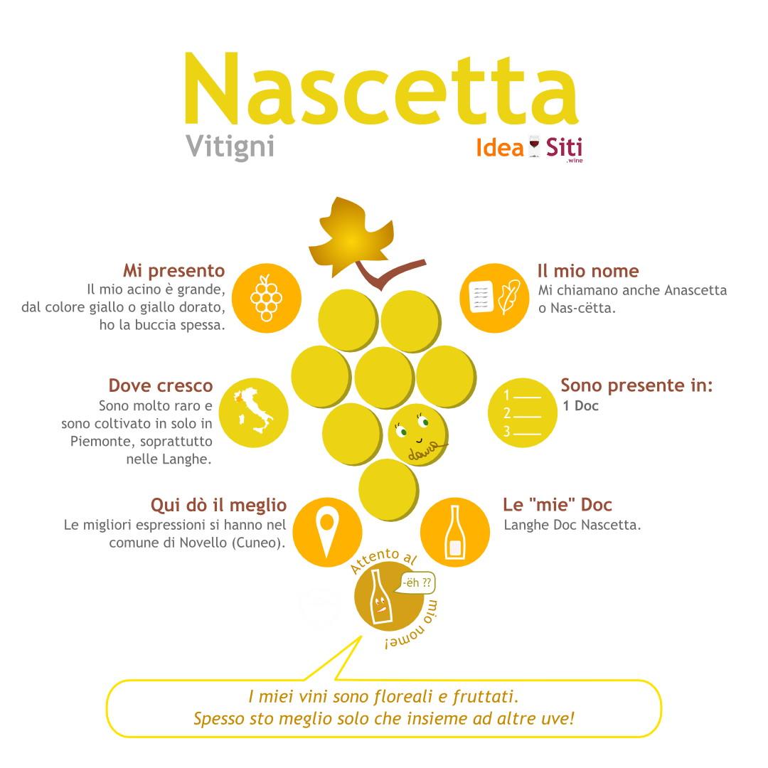 Vitigno del Piemonte nascetta infografica