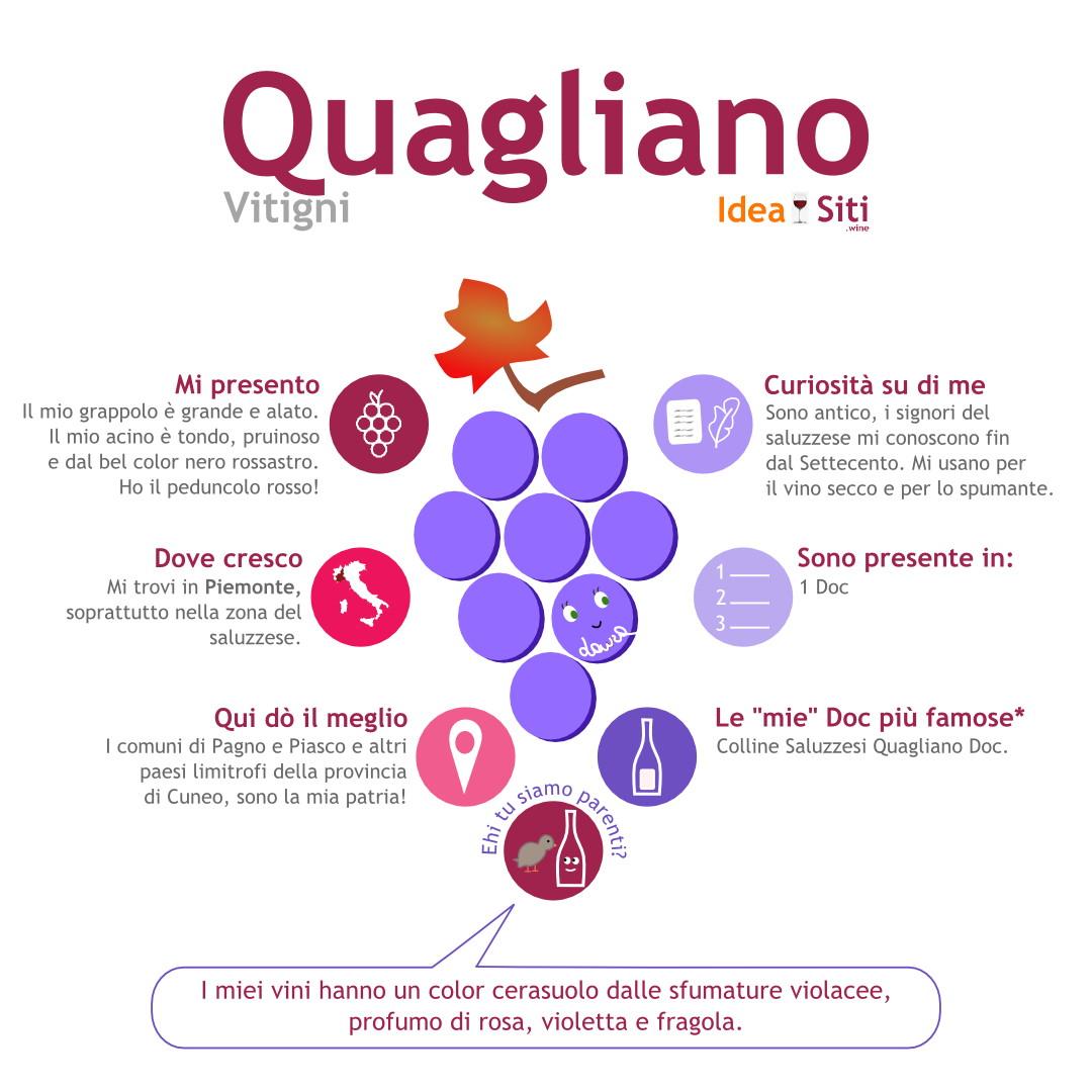 infografica quagliano uva del piemonte