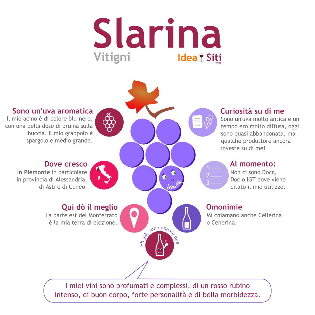 uva del Piemonte slarina